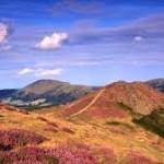 mynd landscape